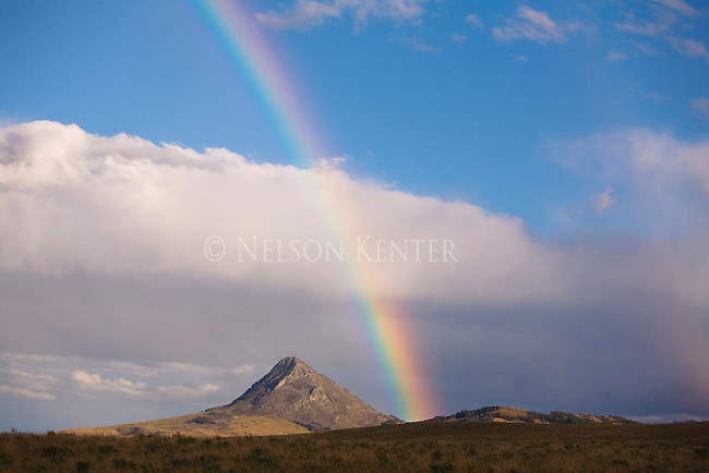 A  rainbow near Haystack Bute on the east front of the Rocky Mountains in Montana