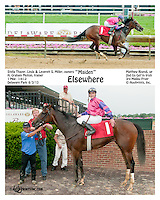 Elsewhere winning at Delaware Park on 6/3/13