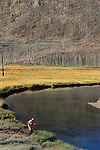Fly fishing on the Madison River, Montana