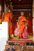 Monks and novices in  Luang Prabang, Laos.