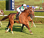 Suffused (no. 6), ridden by Jose Ortiz and trained by William Mott, wins the 21st running of the grade 3 Glens Falls Stakes for fillies and mares three years old and upward on September 3, 2016 at Saratoga Race Course in Saratoga Springs, New York. (Bob Mayberger/Eclipse Sportswire)