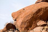 Uluru, Australia. Part of Uluru (Ayers Rock).