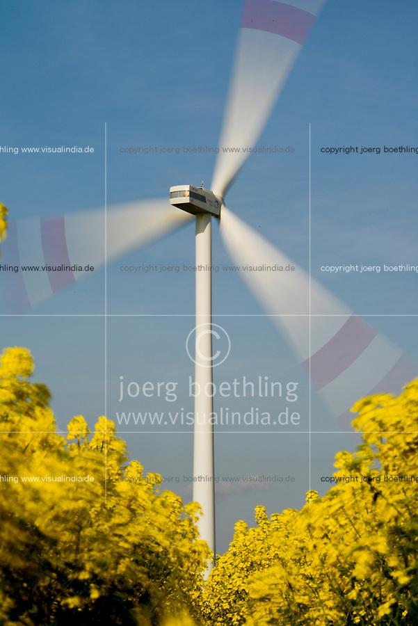 GERMANY Brunsbuettel, Repower wind turbine and rape seed field/ DEUTSCHLAND, Windkraftanlage Repower und Rapsfeld