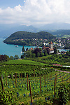 CHE, Schweiz, Kanton Bern, Berner Oberland, Spiez: mit Schloss Spiez und Schlosskirche am Thunersee | CHE, Switzerland, Bern Canton, Bernese Oberland, Spiez: castle Spiez with castle church at Lake Thun