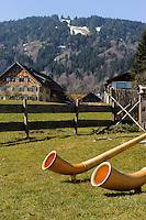 Alphorn in Ofterschwang im Allgäu, Bayern, Deutschland<br /> Alphorn in Ofterschwang, Allgäu, Bavaria Germany
