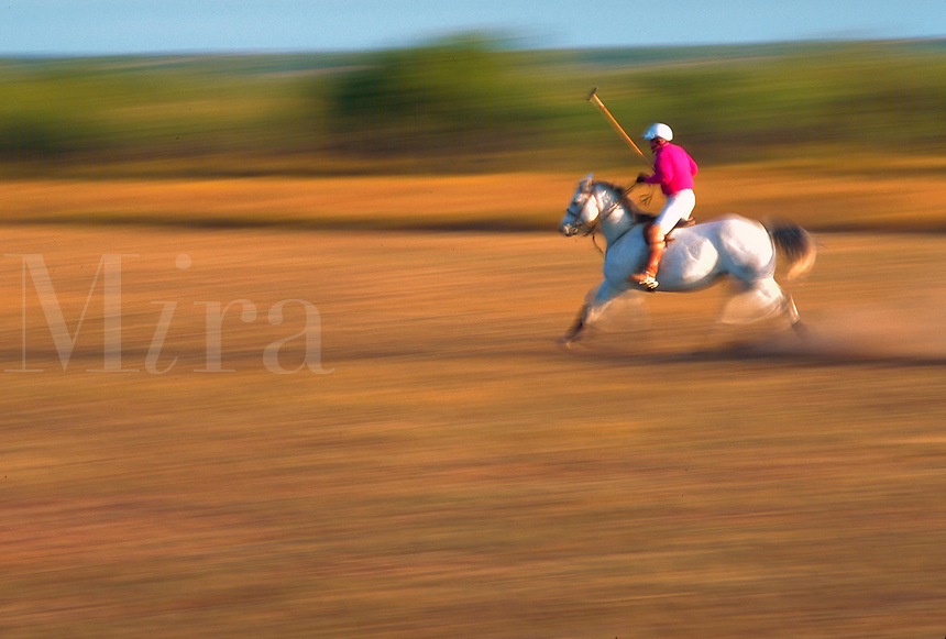 Blur of polo player on horseback