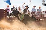 SEBRA - Windsor, VA - 9.15.2013 - Bulls & Action