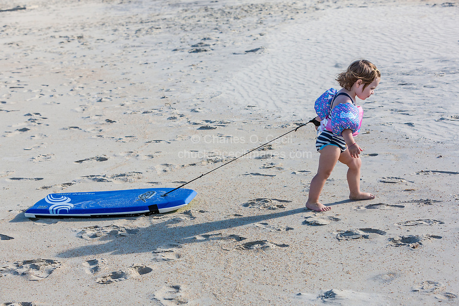Avon, Outer Banks, North Carolina.  Two-year-old Girl Pulling her Boogie Board Home.