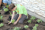 Volunteers planting native wildlife-friendly plants that were donated by the Wildflower Center