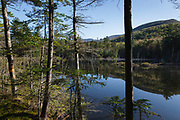 Reflection of mountains in a beaver Pond along Franconia Brook Trail in the Pemigewasset Wilderness of New Hampshire during the spring months. This trail follows the Franconia Branch of the old East Branch & Lincoln Railroad (1893-1948).