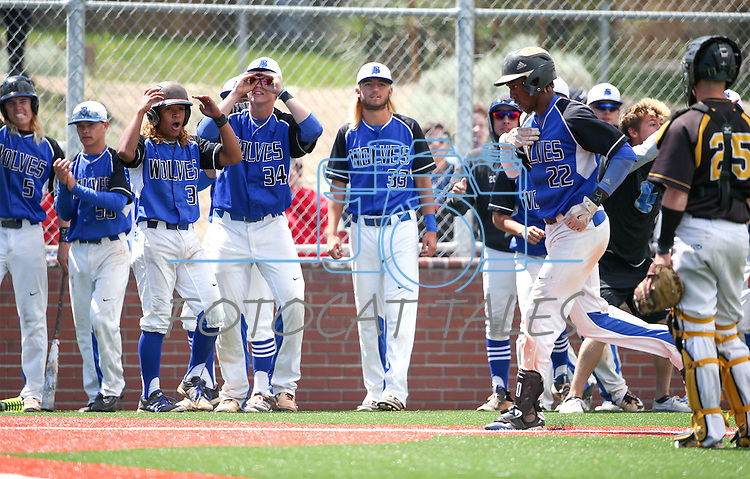 Basic teammates celebrate after JJ Smith's homerun against Galena during NIAA DI baseball action at Bishop Manogue High School, in Reno, Nev., on Friday, May 20, 2016. Basic won 7-3 to advance to the championship. Cathleen Allison/Las Vegas Review-Journal