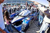 The #0Peugeot of Pedro lamy, Sebastien Bourdais and Nicolas Minassian is surrounded by fans and crewmen on the grid before the 12 Hours of Sebring, Sebring, FL, MArch 20, 2010.  (Photo by Brian Cleary/www.bcpix.com)