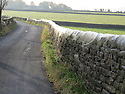08/11/2016<br /> <br /> Arachnophobes look away now! <br /> <br /> More than 100m of these impressive cobwebs were spotted along a country road in Laneshaw Bridge, near the village of Trawden in East Lancashire, with each web containing thousands of the little eight-legged critters.<br /> <br /> In fact photographer, David Woodward, who took the pictures said the lane has become something of a tourist attraction now, with visitors asking villagers where they are.<br /> <br /> All Rights Reserved: F Stop Press Ltd. +44(0)1773 550665   www.fstoppress.com
