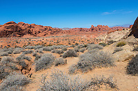 Valley of Fire, Nevada.  View from White Domes Trail.