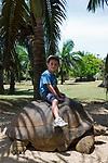 MUS, Mauritius, bei Rivière des Anguilles, La Vanille Crocodile Park & Nature Reserve: Junge reitet auf Riesenschildkroete | MUS, Mauritius, near Rivière des Anguilles, La Vanille Crocodile Park & Nature Reserve: boy riding a giant turtle