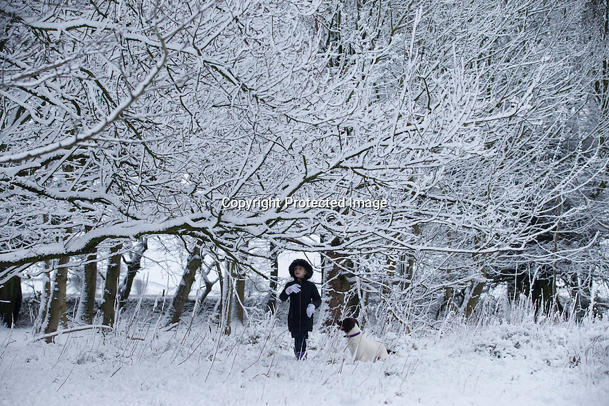03/02/16<br /> <br /> Eight-year-old Freya Kirkpatrick gets up early, before school, to explore the winter wonderland with her dog Chester, on Alsop Moor near Ashbourne, after the tail-end of Storm Henry brings overnight snowfall in the Derbyshire Peak District.<br /> <br /> All Rights Reserved: F Stop Press Ltd. +44(0)1335 418365   www.fstoppress.com.