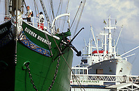 Museumsschiffe Rickmer Rickmers und Cap San Diego in Hamburg, Deutschlan