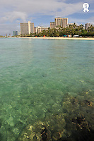 Waikiki beach seafront, view from ocean, Honolulu, Oahu Island, Usan (Licence this image exclusively with Getty: http://www.gettyimages.com/detail/85985787 )