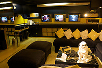 Graceland, home of Elvis Presley : media room