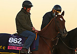 Plum Ali, trained by trainer Christophe Clement, exercises in preparation for the Breeders' Cup Juvenile Fillies Turf at Keeneland Racetrack in Lexington, Kentucky on November 4, 2020.