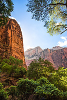 """Zion National Park. Artist signed, limited edition fine art print from the American Splendor series.  Photographed in the American National Parks. Custom edited by the artist, and printed on professional artist canvas. Framed in a custom black wood floater frame.  Size 24x36"""" plus frame.<br /> Price $500<br /> Other proportionate sizes may be available on custom order."""