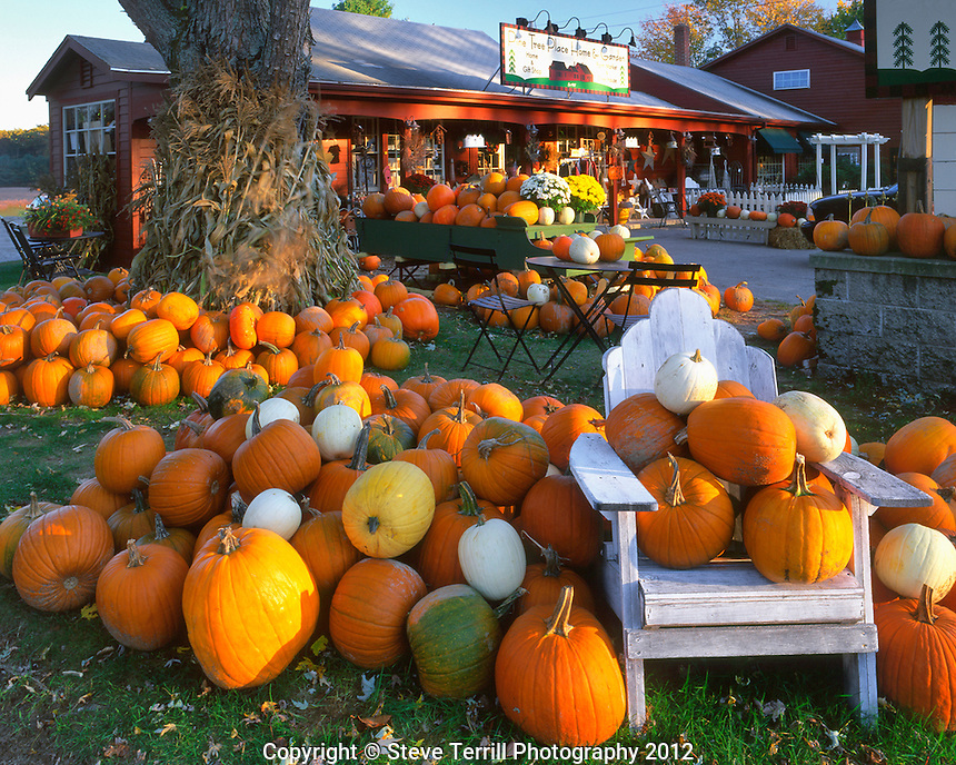 Autumn display at store in Wells, Maine