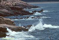 AC24-002z  Rocks and Ocean - Ocean Drive, Acadia National Park, Maine