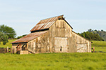 Wooden barn, fading and peeling yellow paint, corrugated roof.