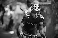 2013 Giro d'Italia.stage 10..Sergio Luis Henao (COL)climbing at 20% gradient.