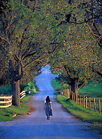 Woman walking along a country road. Woman. Strasburg Pennsylvania USA Lancaster County.