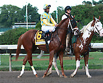 Stealcase in the 45th running of the $1,000,000 Grade I Haskell Invitational for 3-year olds, going 1 1/8 mile.