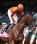 LEXINGTON, KY - October 7, 2017.  #8 Tiz Mischief and jockey Robby Albarado win the 4th race for Maiden 2 year olds $65,000 for owner Frank Jones Jr. and trainer Dale Romans at Keeneland Race Course.   Lexington, Kentucky. (Photo by Candice Chavez/Eclipse Sportswire/Getty Images)