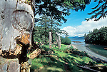 Haida Gwaii, Totem Poles, Queen Charlotte Islands, Canada, Haida mortuary totem poles, Haida village site of Skang wai, Red Cod Village or Ninstints, South Moresby Island, British Columbia, Canada, North America,.