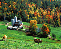 Farm scene at West Barnet, VT