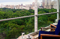 Central Park view from the house<br /> <br /> A pied-a-terre for a European family to use when the come to New York City.The two bedroom, two bathroom apartment is about 1200 sq. ft built like a loft with all rooms overlooking Central Park South