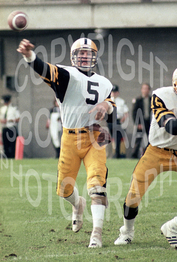 Ralph Dieter Brock Hamilton Tiger Cats quarterback 1983. Copyright photograph Scott Grant