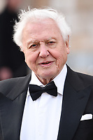 """Sir David Attenborough<br /> arriving for the world premiere of """"Our Planet"""" at the Natural History Museum, London<br /> <br /> ©Ash Knotek  D3491  04/04/2019"""