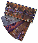 Waterfowl<br />