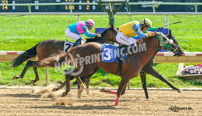 Iron Pearls winning at Delaware Park on 10/7/21