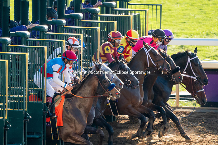 November 6, 2020: Horses race during the Juvenile Fillies on Breeders' Cup Championship Friday at Keeneland on November 6, 2020: in Lexington, Kentucky. Scott Serio/Eclipse Sportswire/Breeders Cup/CSM