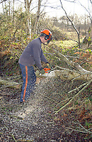 Operating a chainsaw with full safety equipment.