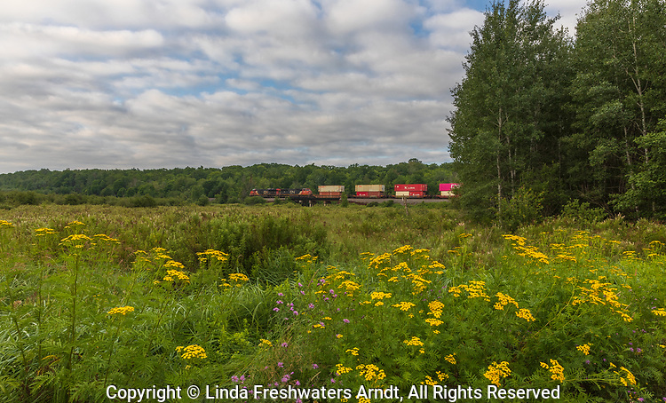 Freight train travelling through northern Wisconsin.