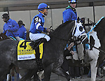 April 4, 2015: Frosted with Joel Rosario wins the Grade I Twinspires.com Wood Memorial for 3-year olds, going 1 1/8 mile at Aqueduct Racetrack. Trainer: Kiaran McLaughlin. Owner: Godolphin Stables LLC. Sophie Shore/ESW/CSM