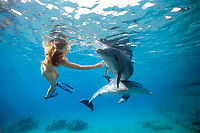 Dolphin trainer interacting with Bottlenose Dolphins, Tursiops truncatus, Dolphin Reef, Eilat, Israel, Red Sea.