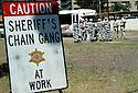 AJ Alexander - Maricopa County Sheriff's Office Chain Gang cleaning up an empty lot in Down Town Phoenix, AZ..Photo by AJ Alexander