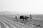Berivoli De Jos, Transylvania<br /> Romania<br /> April 30, 1992<br /> <br /> Sowing seeds