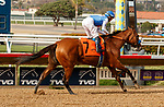 DEL MAR, CA  AUGUST 21: #7 Private Mission, ridden by Flavien Prat, wins the Torrey Pines Stakes (Grade lll) on August 21, 2021 at Del Mar Thoroughbred Club in Del Mar, CA. (Photo by Casey Phillips/Eclipse Sportswire/CSM)