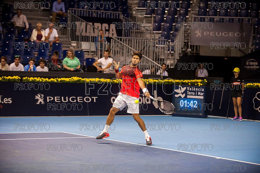 VALENCIA, SPAIN - OCTOBER 27: Fernando Verdasco during Valencia Open Tennis 2015 on October 27, 2015 in Valencia , Spain