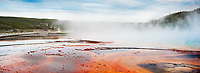 """""""Walk of Fire""""  Yellowstone National Park  Grand Prismatic Spring 