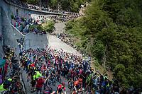 peloton at the Passo di San Boldo<br /> <br /> Stage 19: Treviso to San Martino di Castrozza (151km)<br /> 102nd Giro d'Italia 2019<br /> <br /> ©kramon